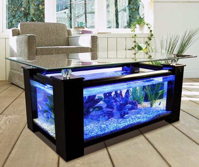 Beautiful Home Aquarium Design Ideas on home construction designs, home decor designs, home beach designs, home school designs, home art designs, home archery range designs, home library designs, home entertainment designs, home salt designs, home cooking designs, home park designs, home castle designs, home plans designs, home water feature designs, florida home designs, home lake designs, home gardening designs, home glass designs, home dog kennel designs, home cafe designs,