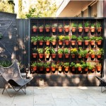 Create a beautiful vertical garden inside your house