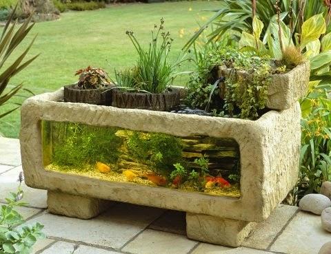 Beautiful home aquarium design ideas for Outdoor fish for sale