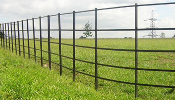Secured Metal Fencing For Gardens