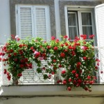 Tips for a beautiful Balcony