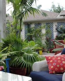 Cozy Outdoor Reading Furnitures