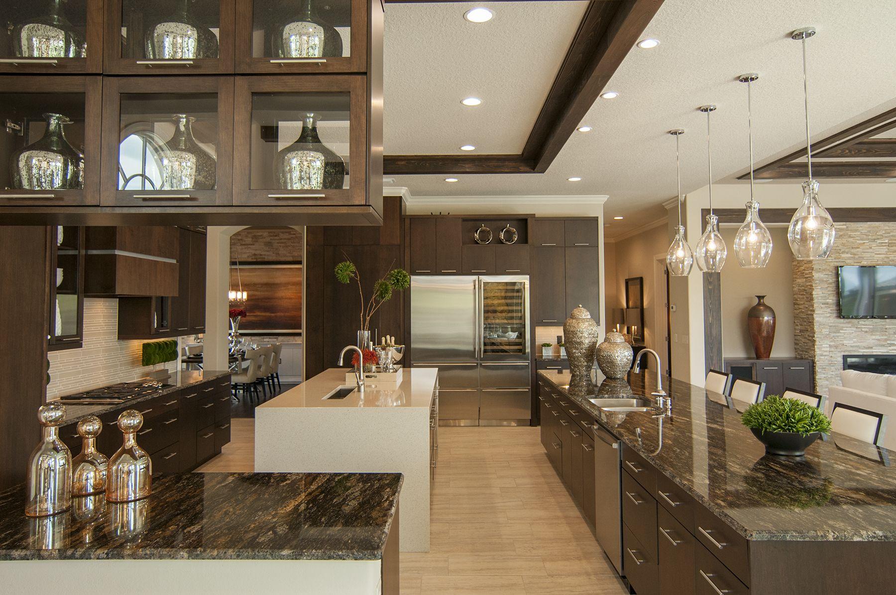 Magnificent kitchen designs with dark cabinets for Great kitchen designs