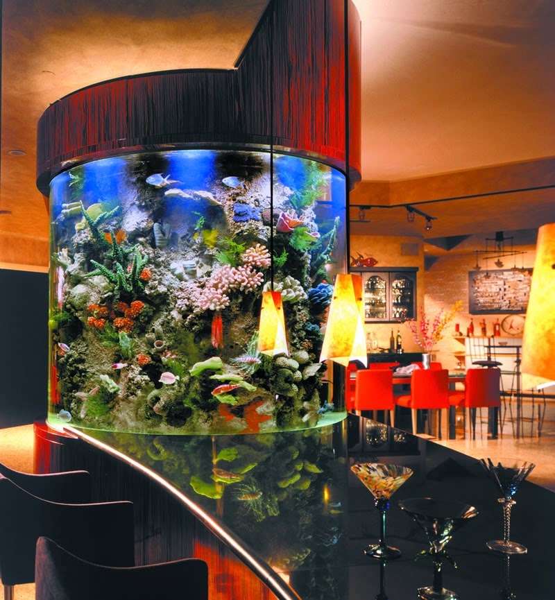 Home Aquarium Design Ideas: Beautiful Home Aquarium Design Ideas