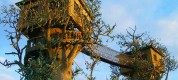 Architecture-Exotic-Log-Spiral-Staircase-Around-Tree-With-Fantastic-Rope-Bridge-For-Unique-Tree-Houses-Design-Cool-Tree-House-Designs-With-Unique-Fantastic-Tree-House-Design-Natural-Innovative-And-Make-Y