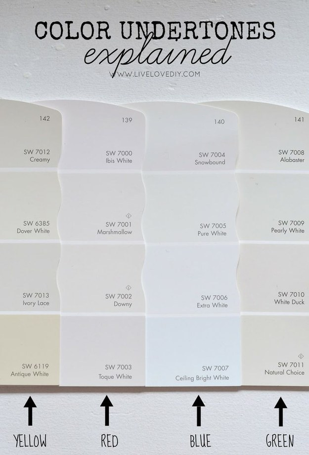 Color Undertone Guide