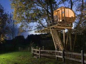 Most-Amazing-Cool-Tree-Houses-Bieicons-With-Unique-Fantastic-Tree-House-Design-Natural-Innovative-And-Make-You-Stunned