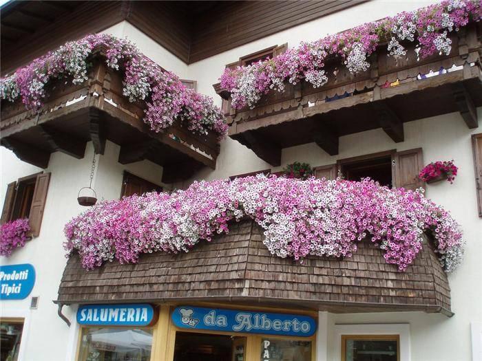 balcony-garden-01