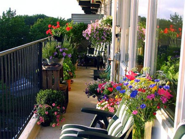 Tips for a beautiful balcony for How to decorate terrace with plants