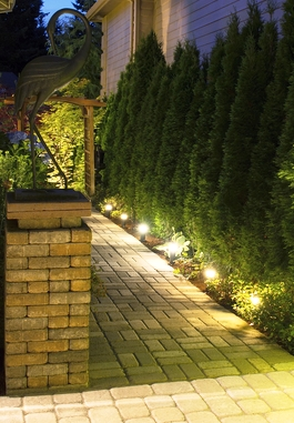 Beautiful garden pathway - Night yard landscaping with outdoor lights ...