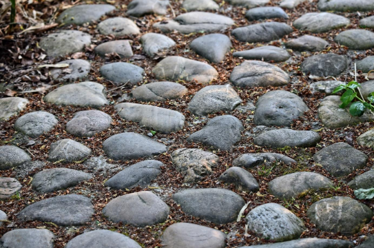 7 Landscaping Ideas For Using Stepping Stones In Your Garden