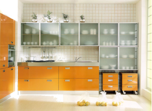 Beautiful glass cabinets for your kitchen for Glass kitchen cabinet doors