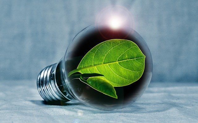 How to Cut the Energy Expenses and Help Your Home Go Green