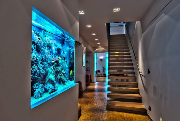 Marvelous Beautiful Home Aquarium Design Ideas