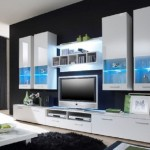 Stylish aesthetic glass shelves under TV