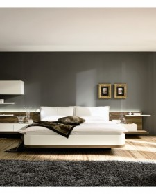Eye catching wall designing and decorations